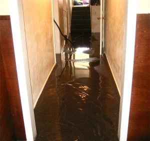 water damage cleanup palmdale