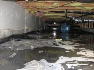 flood cleanup lancaster